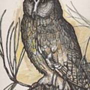 Horned Owl And Pine Art Print