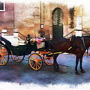 Horse And Carriage Art Print