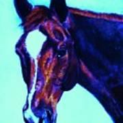 Horse Art Horse Portrait Maduro Striking Purple Art Print