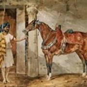 Horse Eastern Art Print