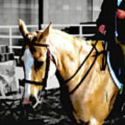 Horse Equus Ferus Caballus V2 Art Print