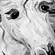 Horse Eyes Art Print