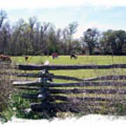 Horse Farm Art Print