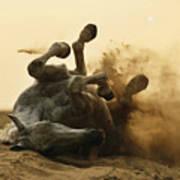 Horse Game Art Print