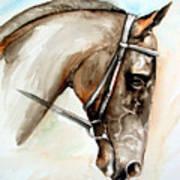 Horse Head Art Print