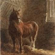 Horse In A Stable Art Print