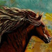 Horse In Heaven Art Print