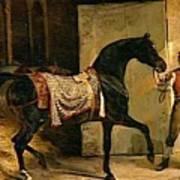 Horse Leaving A Stable Art Print