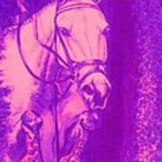 Horse Painting Jumper No Faults Hot Pink Art Print