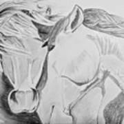 Horse Pair Art Print