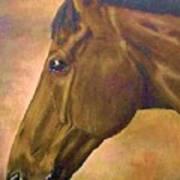 horse portraint PRINCETON pastel colors Art Print