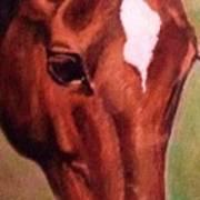 Horse Portrait Horse Head Red Close Up Art Print