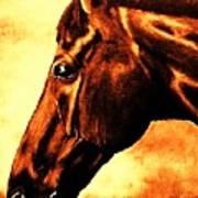 horse portrait PRINCETON brown tones Art Print
