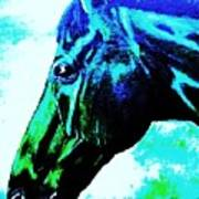 horse portrait PRINCETON really blue Art Print