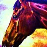 horse portrait PRINCETON wow purples Art Print