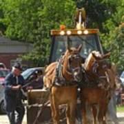 Horse Pull In New Brunswick Canada Art Print