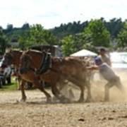 Horse Pulling Team Art Print
