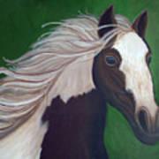 Horse Run Art Print