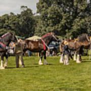 Horse Show Art Print