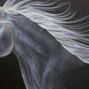 Horse Art Print by Susan Clausen