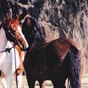 Horse Talk Art Print