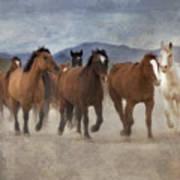 Horses-03 Art Print