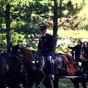 Horses At Arlington Cemetery Art Print
