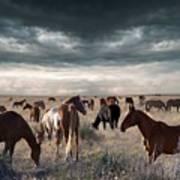 Horses Forever Art Print