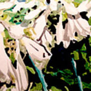 Hosta Blooms Art Print