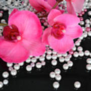 Hot Pink Orchids 2 Art Print