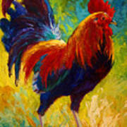 Hot Shot - Rooster Art Print