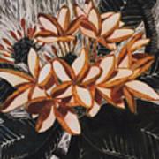 Hothouse Flowers Art Print