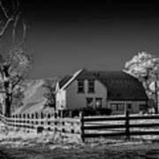 House And Cottonwoods Art Print