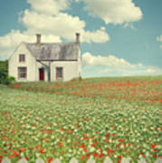 House In The Countryside Art Print