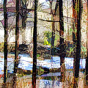 House Surrounded By Trees 2 Art Print