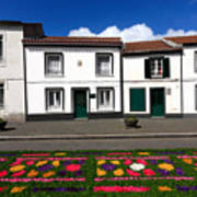 Houses In The Azores Art Print
