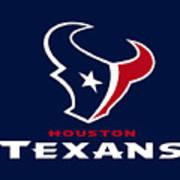 Houston Texans Art Print