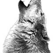 Howling Timber Wolf Art Print