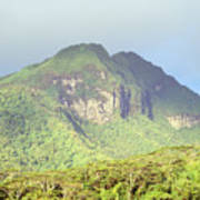 Huahine Forest And Mountaintop Art Print