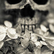 Human Skull Among Flowers Art Print