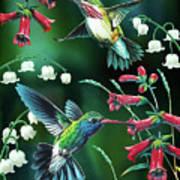 Humming Birds 2 Art Print by JQ Licensing