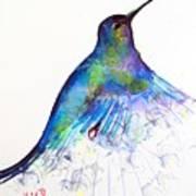Hummingbird 11 Art Print