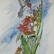 Hummingbird 2 Art Print