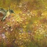 Hummingbird And Hydrangeas Art Print