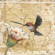 Hummingbird And Wildflower Art Print
