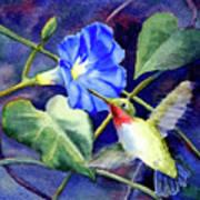 Hummingbird Delight Art Print