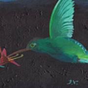Hummingbird Feeding Print by M Valeriano