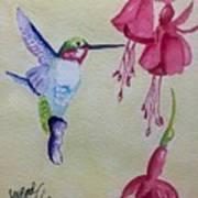 Hummingbird I Art Print