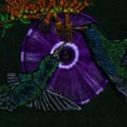 Hummingbird Morning Glory Art Print