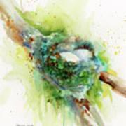 Hummingbird Nest Art Print